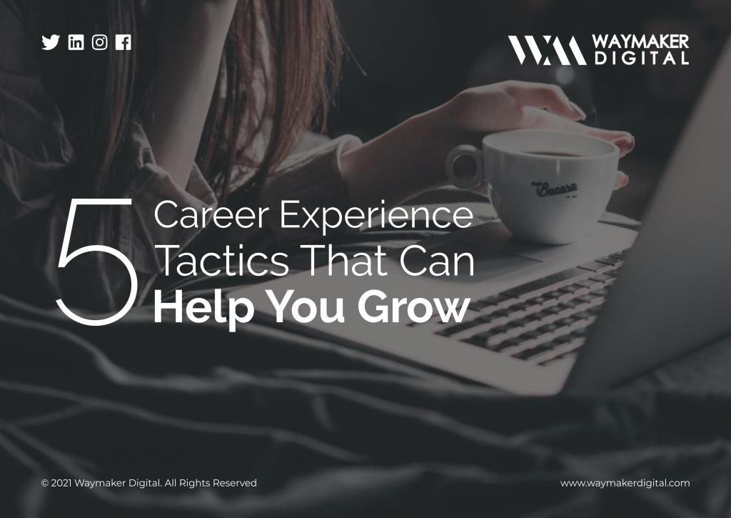 career experience
